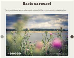 jCarousel一个jQuery插件用于控制水平或垂直顺序的项目清单