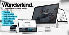 Wunderkind - 响应单页网站HTML模板
