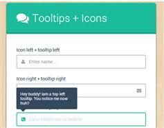 纯CSS3漂亮的带提示工具和图标的验证表单