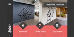 Spider - 扁平有创意的html网页模板