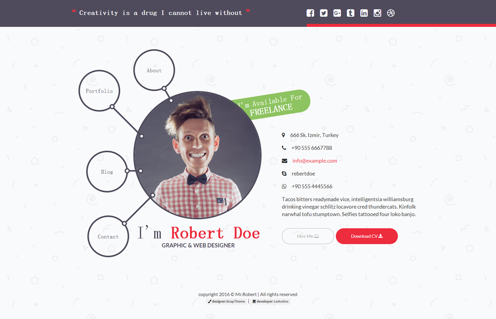 很有创意的个人简历网站_简约特别个人博客模板 - mr.