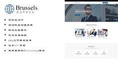 蓝色简约企业Bootstrap网站模板公司官网Html模板 - Brussels