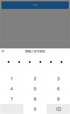 js模拟手机端输入支付密码效果