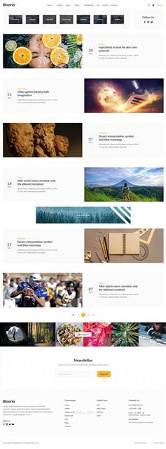 简约实用的电子商务博客HTML模板