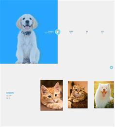 jQuery css3宠物相册图片展示